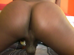 Horny black tranny babe toys and strokes