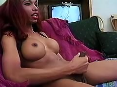 Black shemale sex